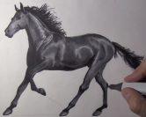 Comment dessiner un cheval facilement ?